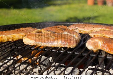 Barbecue Grill Steaks, Grilled Meat