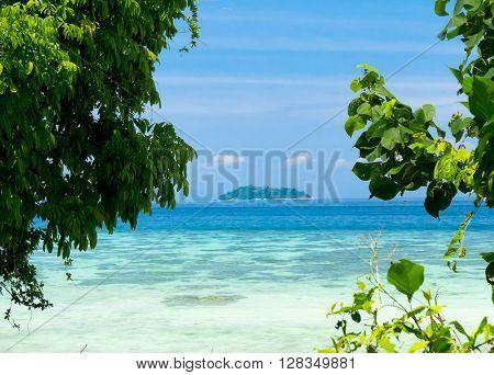 Marine Fantasy Blue Paradise