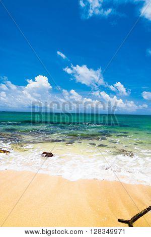 Stormy Scene Shore Landscape