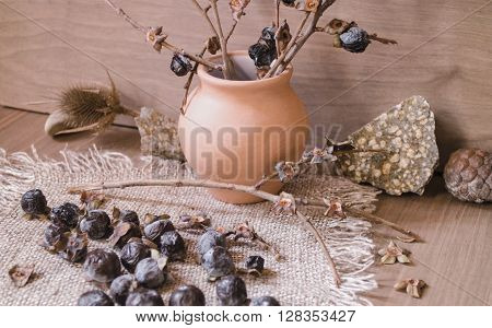 The dried berries are small wild persimmon and broken branches in a clay pot