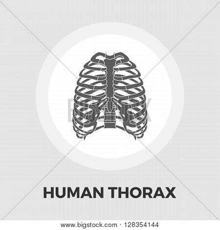 Human thorax icon vector. Flat icon isolated on the white background. Editable EPS file. Vector illustration.ground. Vector illustration.