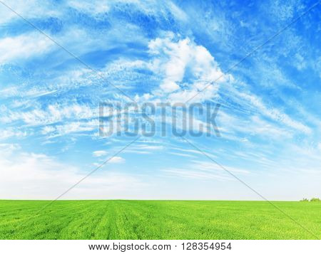 panoramic photo of green grass field and clouds over it