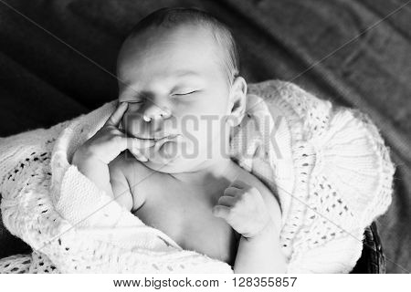 sweet newborn baby sleeping in the basket