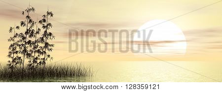 Bamboos and grass over water by sunset - 3D render