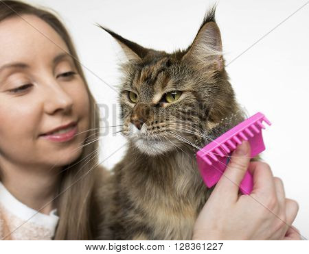 girl and cat close-up on a light background. She takes care of the cat.