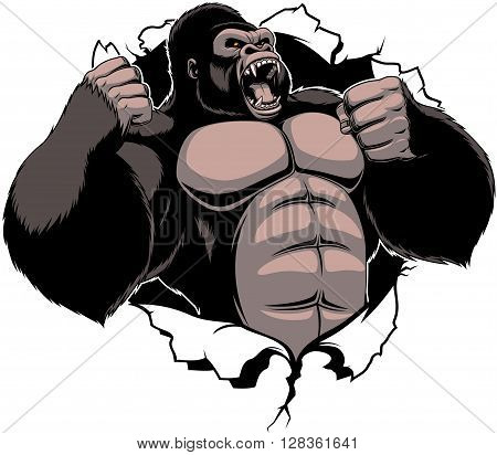 Vector illustration ferocious gorilla breaks the wall with his fists