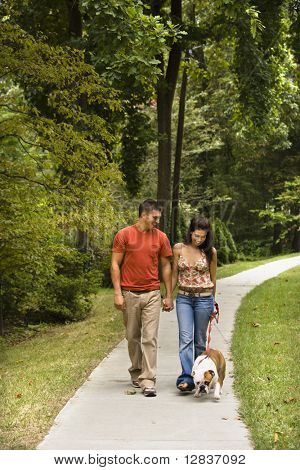 Caucasian mid adult couple walking English Bulldog in park.