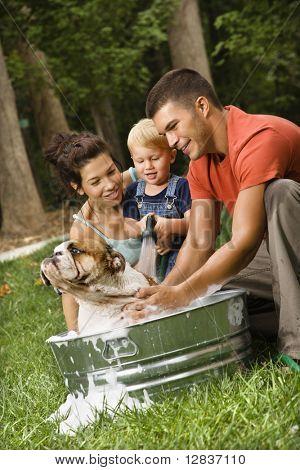 caucasian Familie mit kinder kleinkind Sohn geben Englisch bulldog ein Bad im Freien.
