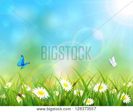 Sunny summer day and blue sky background, butterflies flying above the grass with flowers, illustration.