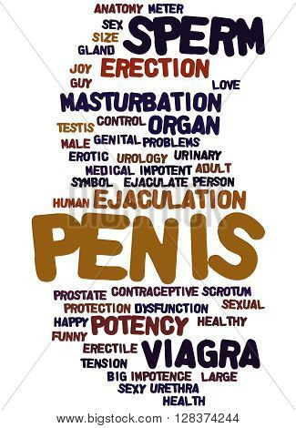Penis, Word Cloud Concept 2