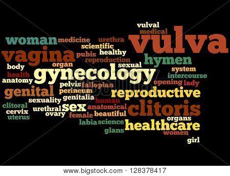 Vulva, Word Cloud Concept 6