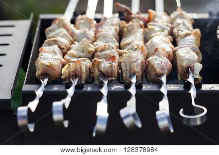 Skewered Marinated Raw Pork
