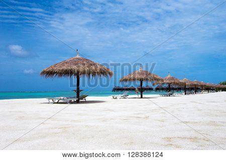tropical beach in Maldives with few palm trees and blue lagoon