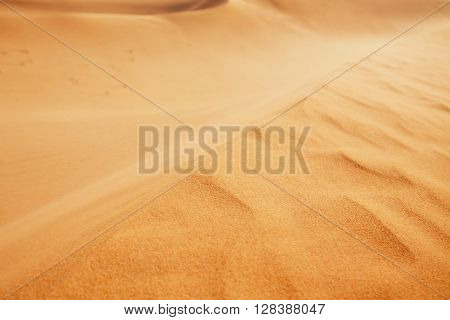 Dune of the sand - close up view