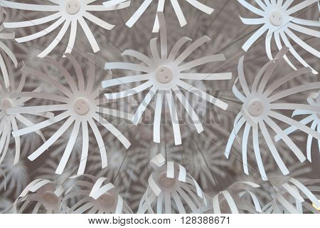 White plastic flowers, detail from the chandelier