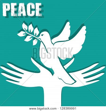 Symbol of peace: the hands and a dove with a sprig.