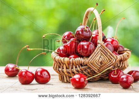 Basket With Cherry Close Up On Table In Garden