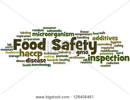 Food Safety, Word Cloud Concept 7