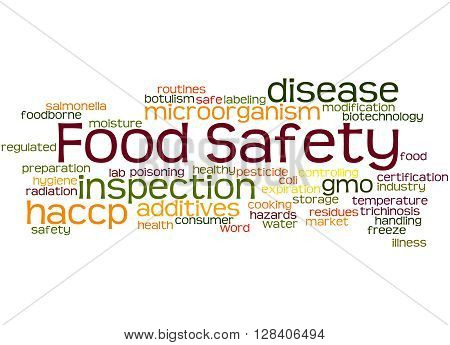 Food Safety, Word Cloud Concept 8