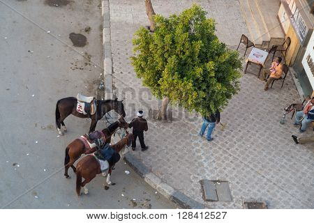 CAIRO, EGYPT - FEBRUARY 2, 2016: Aerial view of street corner with local man renting horses for riding.