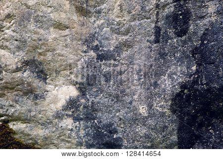 light grey stone texture a little moss