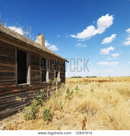 Side of wooden dilapidated building in rural field.
