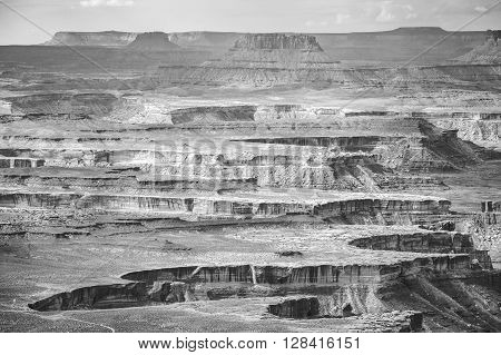 Black And White Landscape In Canyonlands National Park.