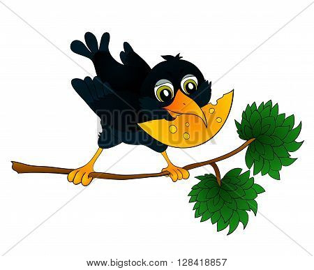Raven on a branch with cheese in its beak with isolation on a white background