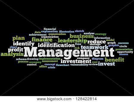 Management, Word Cloud Concept 2