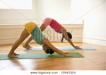 Two young women on yoga mats doing downward facing dog pose.