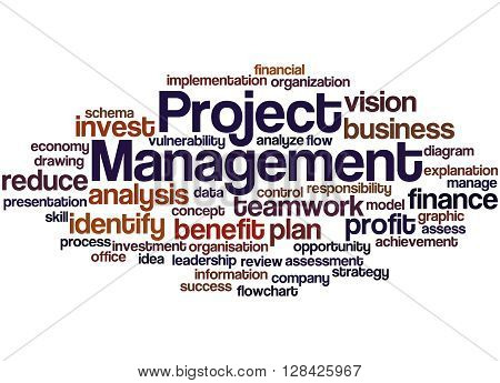Project Management, Word Cloud Concept 2
