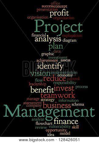 Project Management, Word Cloud Concept 7