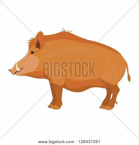 Wild boar vector illustration isolated on a white background