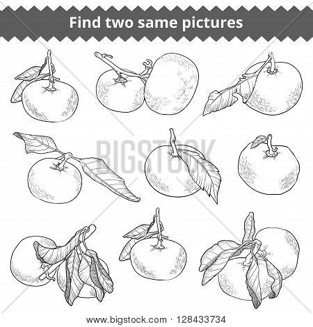 Find Two Same Pictures. Vector Black And White Set Of Mandarines
