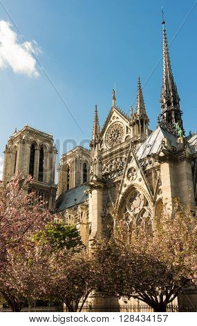 Notre Dame cathedral is a historic catholic cathedral on the eastern half of the Ile de la Cite in the 4th arrondissement of Paris.