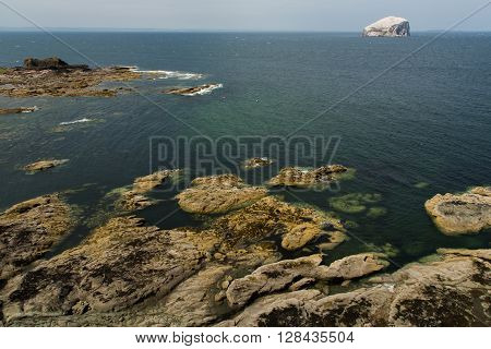 Stunning bass rock - A sea bird sanctuary