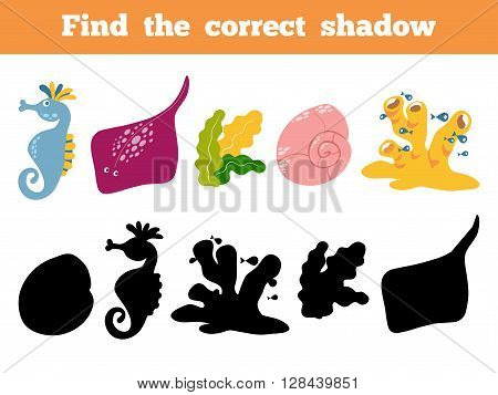 Find The Correct Shadow. Vector Color Set Of Sea Life