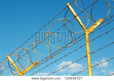 In Oman Barbwire