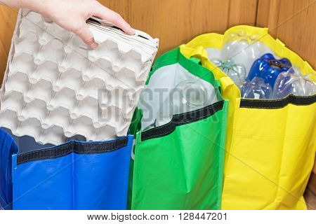 Female hand is sorting paper packaging for eggs to the blue bag. Household Waste concept.