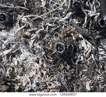 texture of ash from burnt grass closeup