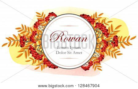 Vector card with rowan berries and golden leaves
