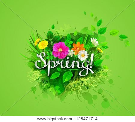 The spring composition with  flowering chamomiles, yellow dandelions, wild rose and green leaves