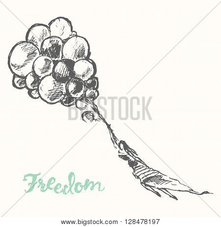 Hand drawn illustration of young girl with balloons. Openness, happiness, freedom concept. Vector illustration, sketch