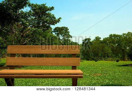 wooden bench chair at the park or garden