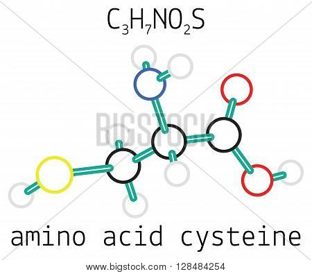 C3H7NO2S cysteine 3d amino acid molecule isolated on white