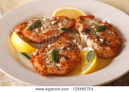 Grilled Chicken Breast With Sage, Garlic And Oil Closeup. Horizontal