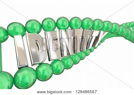 Identity DNA Word Self Internal Heredity 3d Illustration