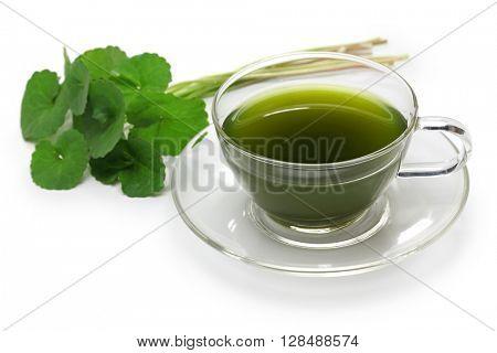 gotu kola, asiatic pennywort, centella asiatica, ayurveda herbal drink