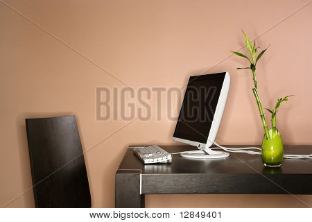 Computer on a table sitting next to a bamboo plant in a vase. Horizontal shot.