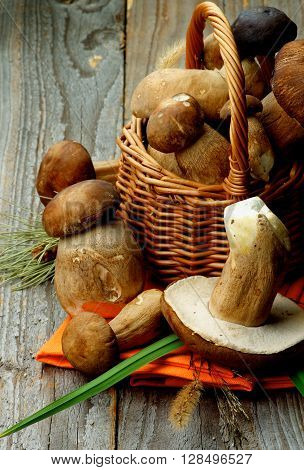 Heap of Fresh Raw Boletus and Porcini Mushrooms with Dry Stems and Grass in Wicker Basket on Orange Napkin closeup on Rustic Wooden background